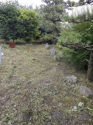 西の庭.JPG